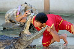 Crocodile Show at Samutprakarn Crocodile Farm and Zoo, Thailand. Man performed crocodile show by putting his head in it's opened mouth Stock Photos