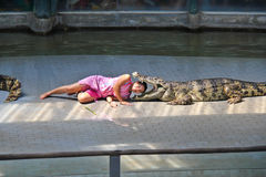 Crocodile show in Thailand. Sriracha, Thailand - 19 Feb. 2011 : An unidentified showgirl takes her head into the crocodile's mouth in the crocodile show at Stock Image