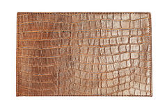 Free Crocodile Skin Royalty Free Stock Photography - 5961797