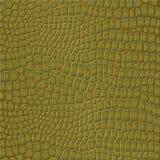 Crocodile skin stock photography