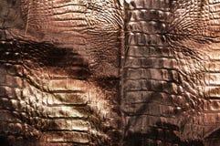 Crocodile skin leather background Stock Images