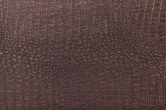 Crocodile skin leather, bronze background Stock Photos