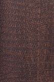 Crocodile skin leather, bronze, metallic background Stock Photography