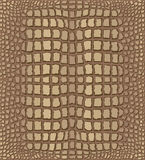Crocodile Skin. Light Brown Crocodile Skin Texture - Illustration with Pattern in Swatches Stock Photos