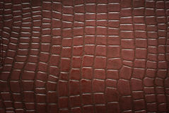 Crocodile skin pattern. Brown background with crocodile skin pattern Stock Photo