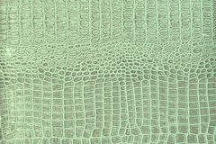 Crocodile skin pattern. Old worn retro crocodile skin pattern Royalty Free Stock Photos