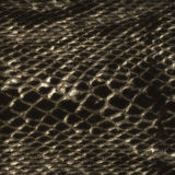 Crocodile skin pattern detail Stock Photo