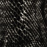 Crocodile skin pattern Royalty Free Stock Image