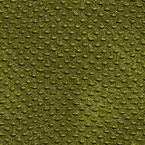 Crocodile skin texture Royalty Free Stock Photos
