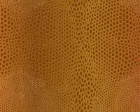 Crocodile skin texture. Imitation leather brown snake. 10 eps Stock Image