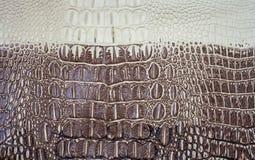 Crocodile skin texture Royalty Free Stock Photos