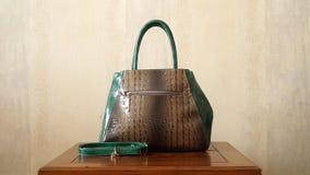 Crocodile Skin Woman Hand Bag Royalty Free Stock Photo