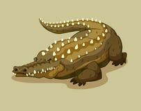 Crocodile with spikes on the back Stock Photos