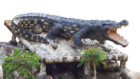 Crocodile statue agape. Isolate Statue large crocodile was agape on the rocks in the garden, which acts like the real thing Stock Photos