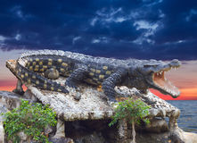 Crocodile statue Cloudy. stock images