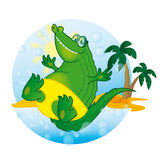 Crocodile Sunny Stock Photo