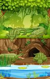 Crocodile at the swamp. Illustration vector illustration