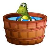 A crocodile swimming at the bathtub Stock Photo