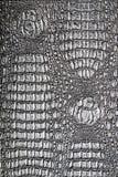 Crocodile texture. Metallic crocodile-like texture background Royalty Free Stock Photo