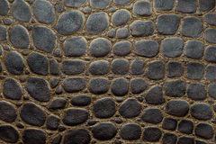 Crocodile textured leather background Royalty Free Stock Photo