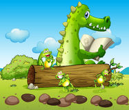 A crocodile and the three playful frogs Royalty Free Stock Photo