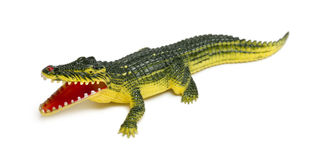 Crocodile toy in front of white background Stock Image