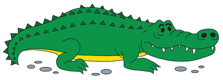 Crocodile vector Royalty Free Stock Image