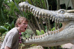 Crocodile Versus Man Stock Image