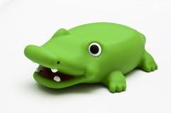 Crocodile vert Photo libre de droits