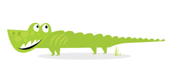 Crocodile vert heureux de dessin animé d'isolement sur le blanc