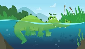 Crocodile in water. Alligator amphibian reptile wild green angry wild animal swimming vector cartoon background. Green alligator in river water, wildlife stock illustration