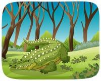 Crocodile in woods scene. Illustration stock illustration