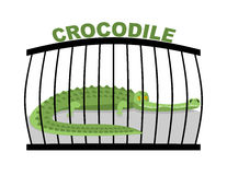 Crocodile in zoo. Large alligator in cage. Stock Photography