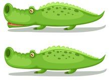 Crocodiles. Illustration of isolated two crocodiles on white background Stock Photos