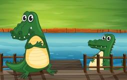 Crocodiles in the bridge Stock Photo