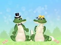 Crocodiles couple Royalty Free Stock Photo