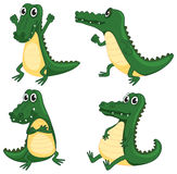 Crocodiles. Illustration of crocodiles on a white background Stock Photography