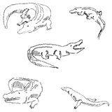 Crocodiles. Sketch pencil. Drawing by hand. Vector Royalty Free Stock Photo