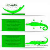 Crocodiles. Stock Photo