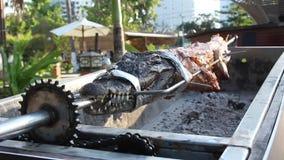 Crocodilo fritado na grade vídeos de arquivo