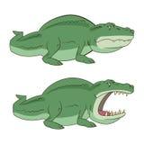 Crocodilo, ilustração do vetor do jacaré Foto de Stock Royalty Free