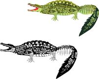 2 crocodilos no branco Fotos de Stock Royalty Free