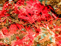 Crocoite. Is lead chromate Dundas Tasmania. Getting from hypergenic zones and decaying lead ores Royalty Free Stock Photos