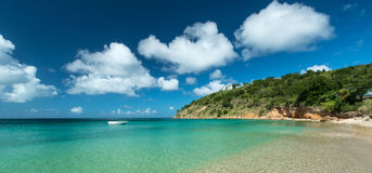 Crocus Bay Royalty Free Stock Image
