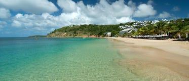 Crocus Bay Stock Images
