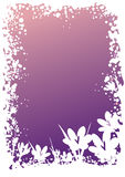 Crocus border. Flower border vector with crocus Royalty Free Stock Images