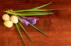 Crocus and Eggs. A still life shot of crocus and speckled eggs Royalty Free Stock Photo