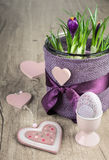 Crocus flower pot and pink Easter decorations on wood Royalty Free Stock Photos
