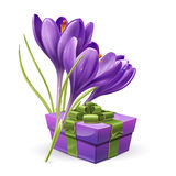 Flowers with a gift Royalty Free Stock Images