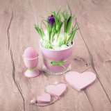 Crocus flowers and pink Easter decorations on wood Royalty Free Stock Images